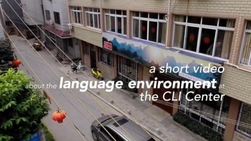 CLI Center – Language Environment